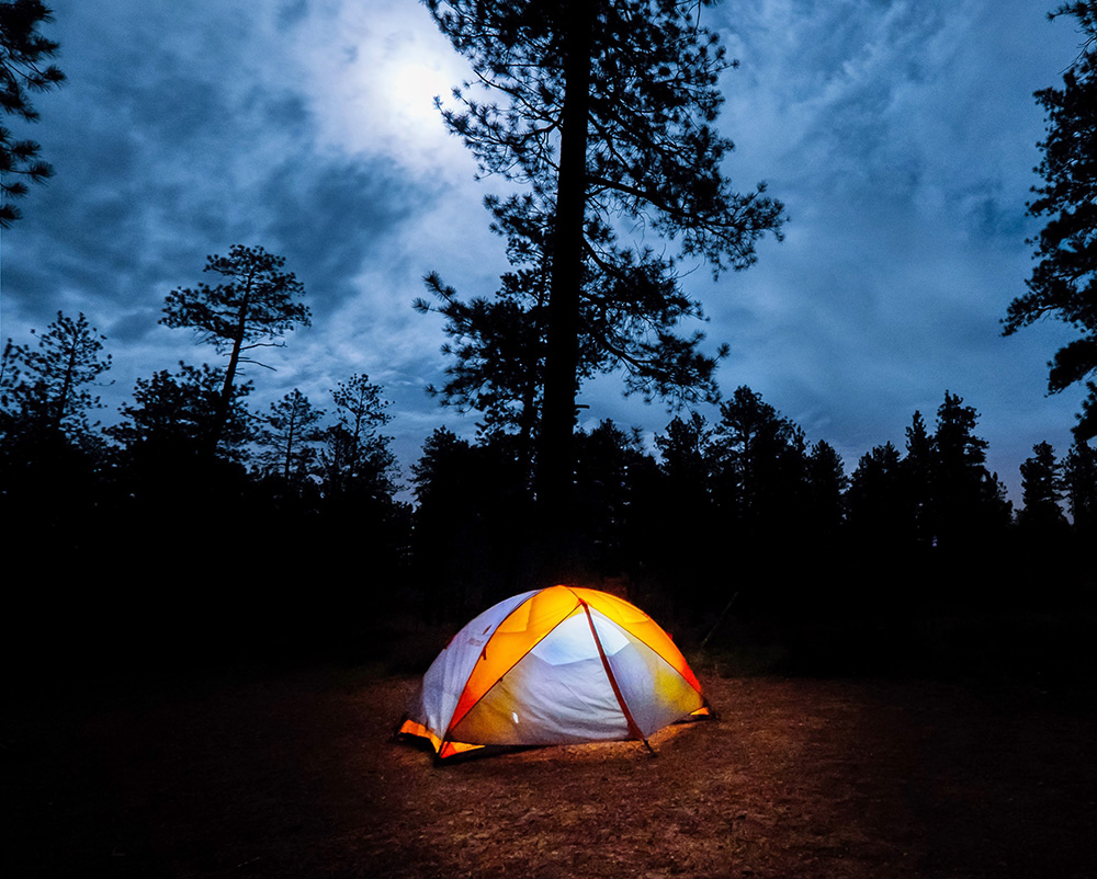 Camping-in-the-woods1